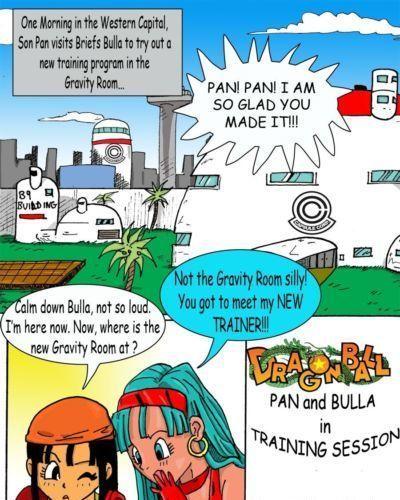 Dragon Ball- Pan And Bra