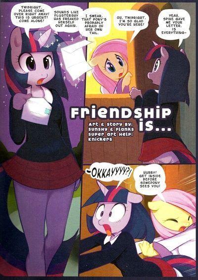 दोस्ती है ....
