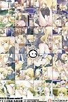(C87) Atelier Maruwa (Maruwa Tarou) Koi no Ougonritsu - The Golden Rule of Love (THE IDOLM@STER)