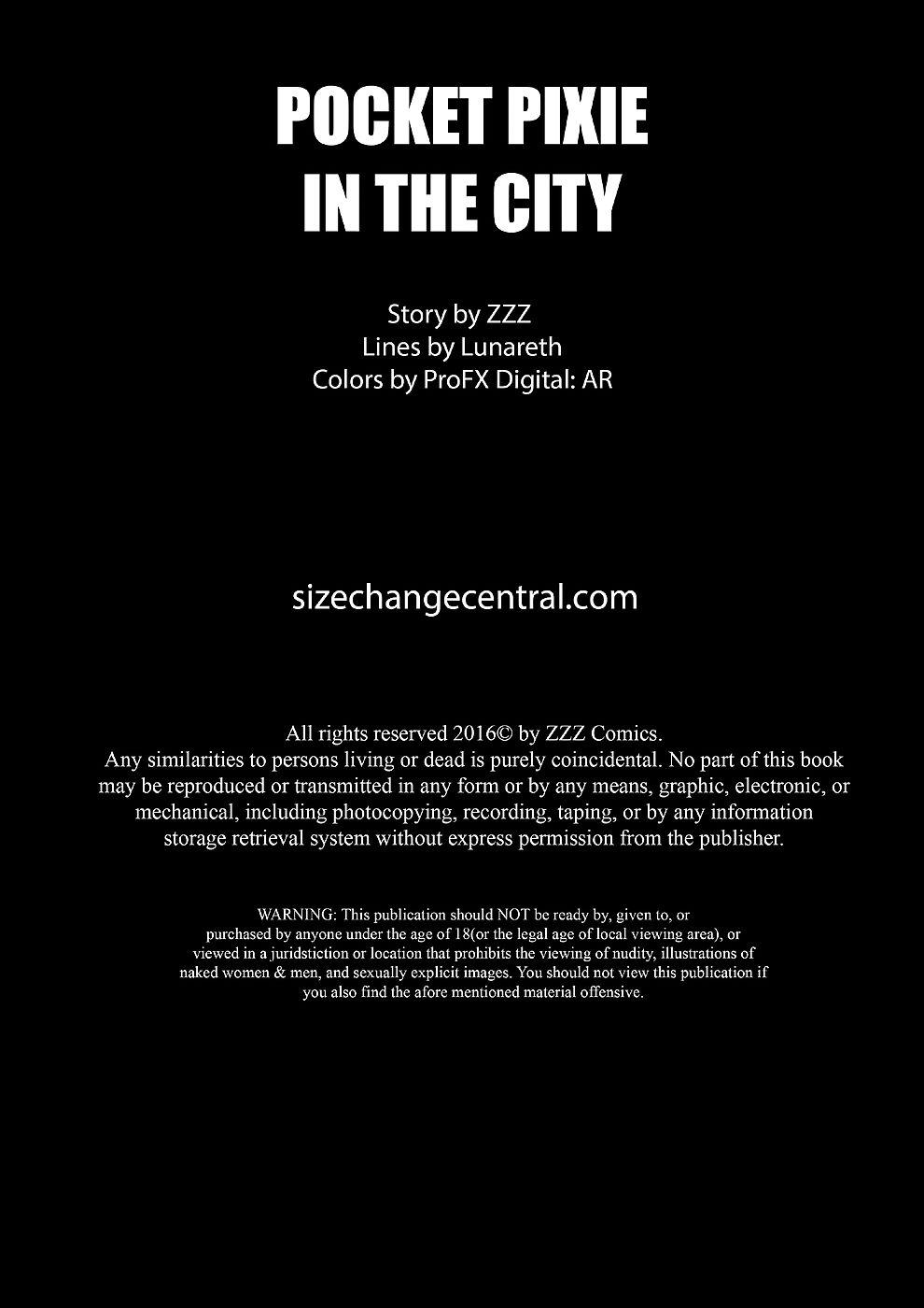 Pocket Pixie in the City CE- ZZZ